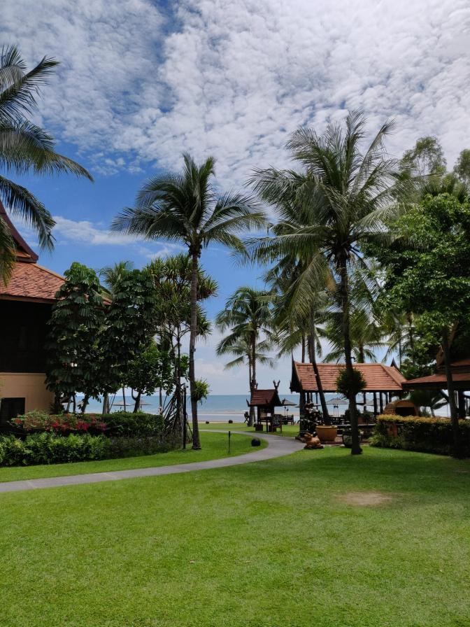 Palmbomen en zeezicht