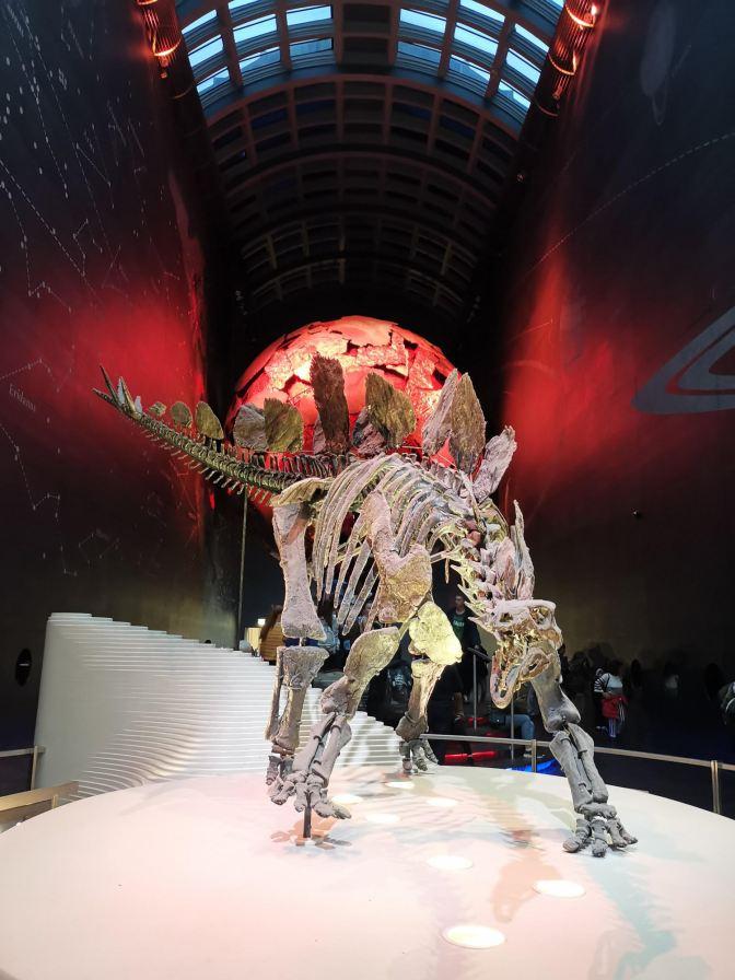 Skelet Natural History Museum London