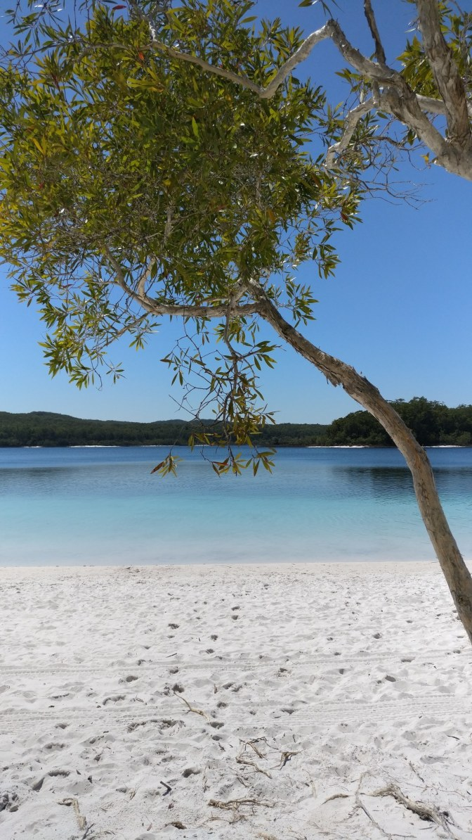 Stilleven bij Lake McKenzie