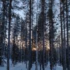 Een week leven op de toendra in Siberië?