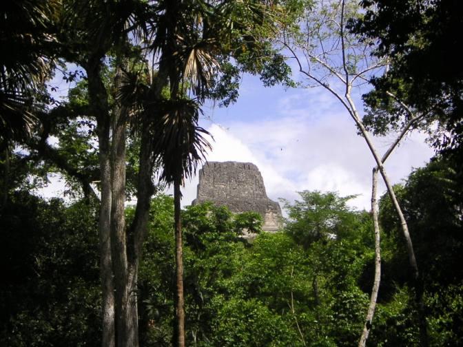 Doorkijk in Tikal, Guatemala