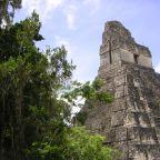 De wonderen van de oude Mayastad Tikal