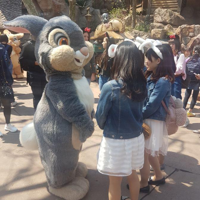 Disneyland Tokio: schattig op zoveel manieren