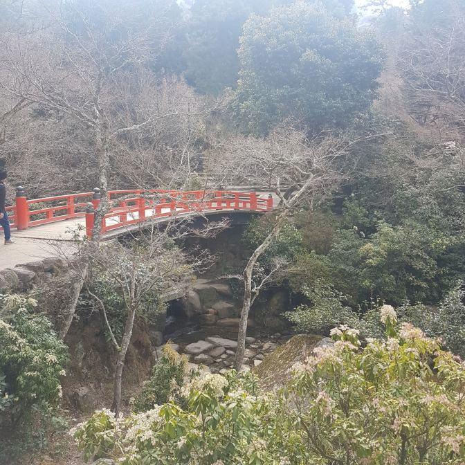 Het is een prachtig park: heel Japans