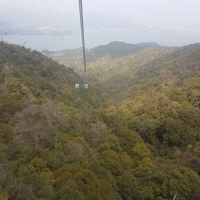 Genoeg groen te zien vanuit de kabelbaan