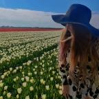 The Tulip Barn in Hillegom is een heerlijk uitje in Nederland